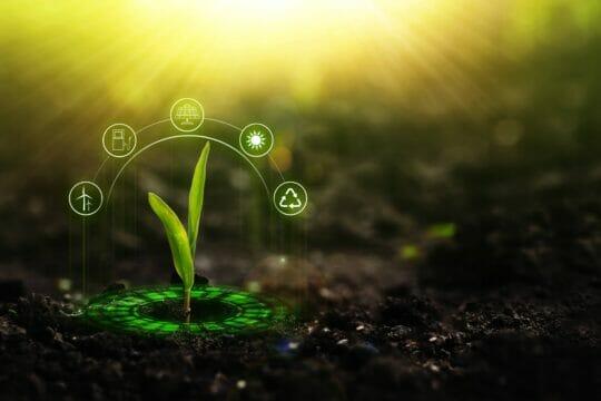 Cuáles son las tecnologías del futuro de la agricultura en México